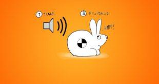 شبکه عصبی ساده آموزش خرگوشی