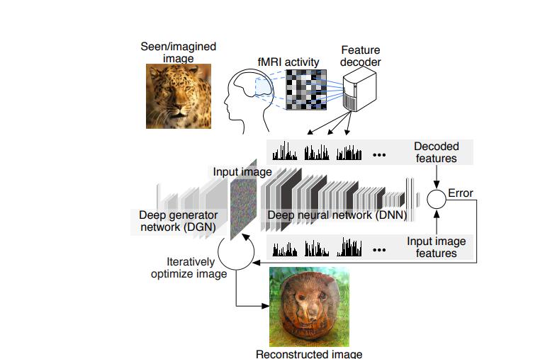 هوش مصنوعی بازسازی افکار دانشگاه کیوتو