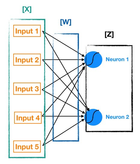 شبکه عصبی نمایش
