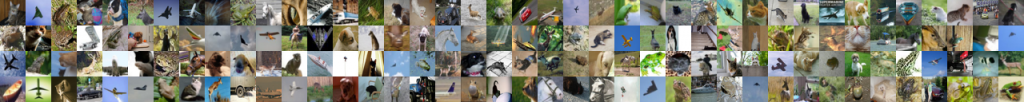 شبکه عصبی تشخیص پرندگان مثبت کاذب