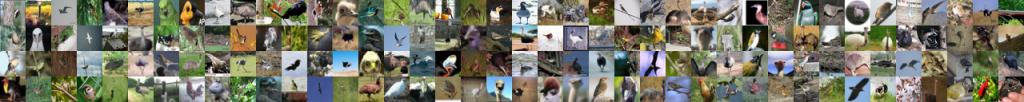 شبکه عصبی تشخیص پرندگان منفی کاذب